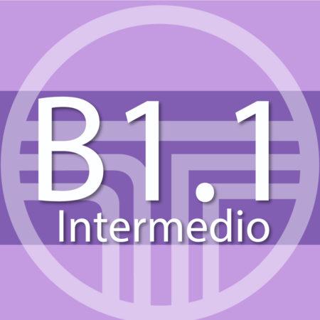 B1.1 – inicio: 01.07.2019 (CENTRO)