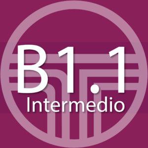 B1.1 INTENSIVO – inicio: 29.04.19
