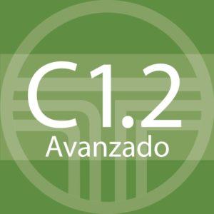 C1.2 Semi-intensivo – Sucursal Centro