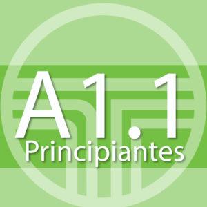 A1 – Semi-Intensivo – Sucursal Centro